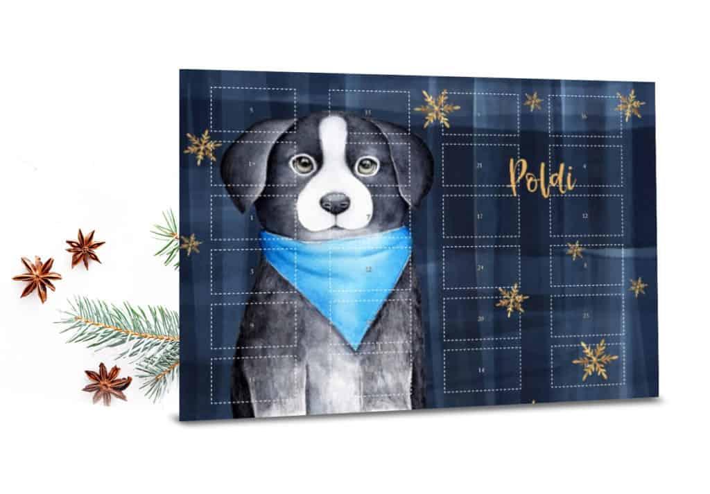 Foto-Adventskalender für Hunde mit Leckerlies gefüllt