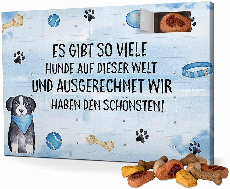 Sprüche-Hunde-Adventskalender mit Leckerlis - Spruch: Es gibt so viele Hunde auf dieser Welt, aber ausgerechnet wir haben den Schönsten!